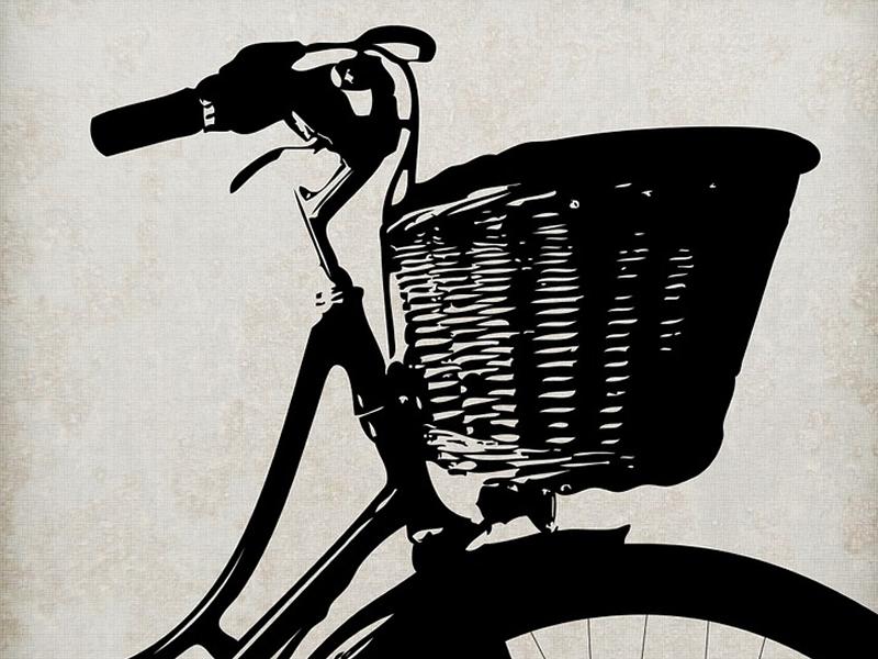 Borse cestini e protezioni